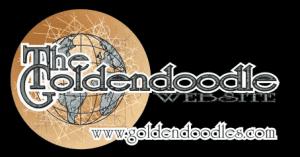 Premium Goldendoodle breeder